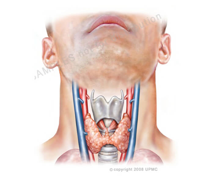 Strep throat infection in adults